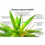 Активный компонент в растительной косметике- Экстракт Алое Барбадосского!